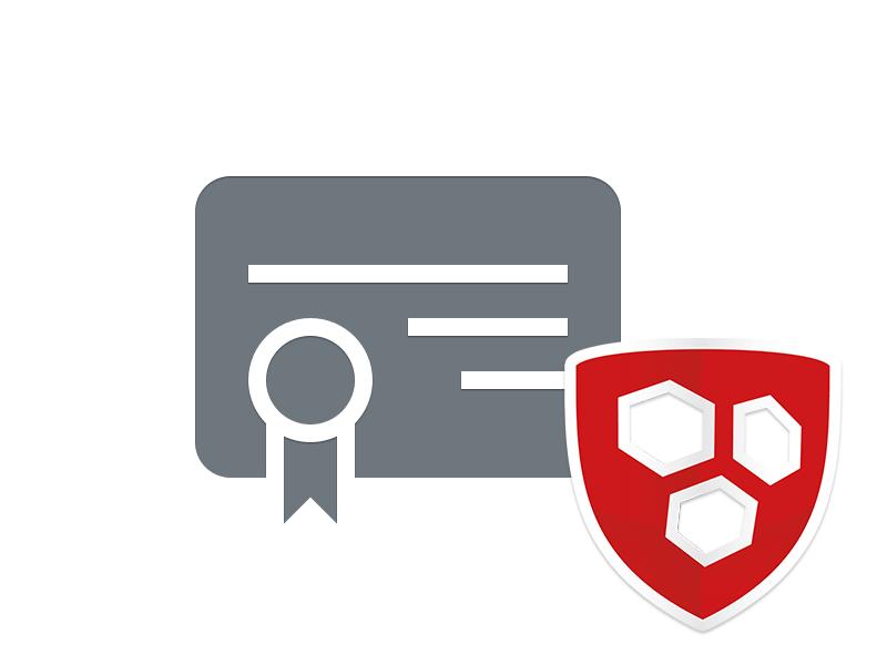 Wildcard Zertifikat - Service Paket (Domainvalidiert)   Services ...