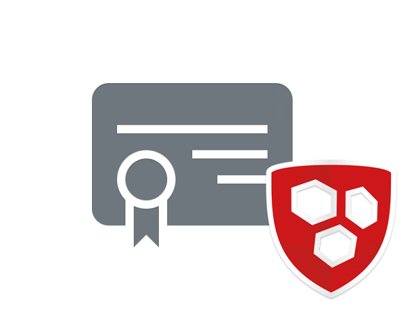 Wildcard Zertifikat - Service Paket (Domainvalidiert)